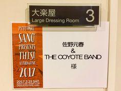 本日のライブ。 【佐野元春 & THE COYOTE BAND】 「THIS! オルタナティブ 2017」 大阪フェスティバルホールにて 17:00〜