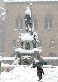 Fontana del Nettuno sotto la neve, Bologna, Italia...❄