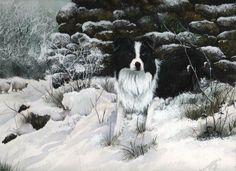 Collie in the snow-watercolour