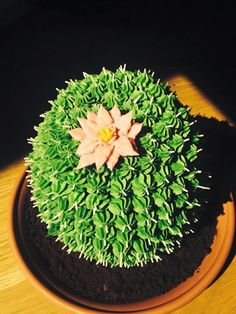Cactus cake in 100% buttercream by Emma Page Buttercream Cakes London