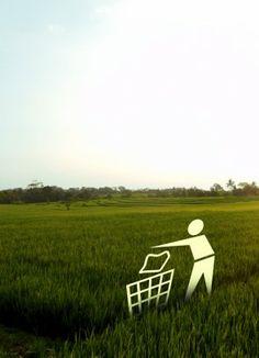 Rice Field Awareness