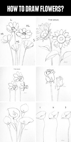 How to draw flowers step by step for beginners Flower Sketch Pencil, Flower Sketches, Flower Drawing Tutorials, Art Tutorials, Easy Flower Drawings, Pencil Art Drawings, Art Drawings Sketches, Learn To Draw Flowers, How To Draw Flowers Step By Step
