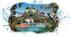 SeaWorld San Diego ~ Even though we lived an hour away we held year passes to SeaWorld for several years. It was our favorite place to visit over Disney and Knott's by far! When friends and family would visit us this is where we would take them! <3