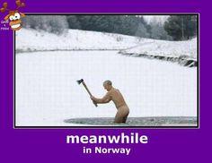 morsomme bilder - Google-søk