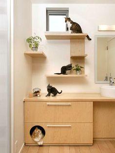 こんな家に住みたい!!素晴らしきキャットウォークのある家。【猫】 - NAVER まとめ