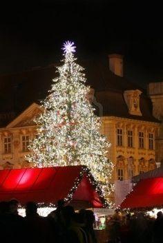 Prague, Czech Republic. Staromestske Square with Christmas tree