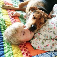 6 Month Update on the Toddler Who Takes Naps with His Puppy - My Modern Metropolis
