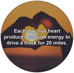 Each day, our heart produces enough energy to drive a truck for 20 miles.