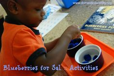 Our Blueberries for Sal Row! - preschool & 1st grade activities {FIAR}