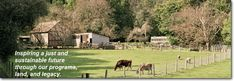 Right in our backyard in Los Altos Hills, farm education and great hiking trails.