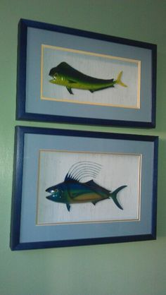 Models of Dolphin Fish and Roosterfish from Baja Penninsula