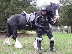 Shire horse descended from the medieval warhorse.  The Northman warhorses will definitely be Shire-inspired.