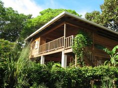 eco houses design - Google Search