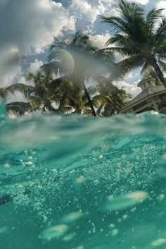 that summer feeling. Spring Break, Beautiful World, Beautiful Places, Amazing Places, The Beach, Beach Bum, Palm Beach Florida, Pacific Beach, Summer Dream