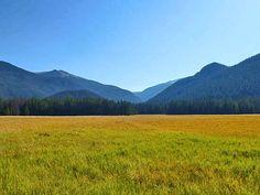 Big Meadows - 3.6 miles, Green Mountain Trailhead, Rocky Mountain National Park Hiking