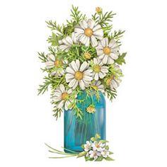daisies - My Grandma Hazel's favorite flowers