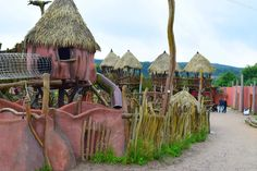 Reise durch die Welt im Zoo Osnabrück