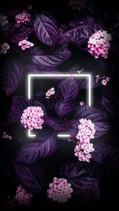 Flower Iphone Wallpaper, Iphone Homescreen Wallpaper, Flower Background Wallpaper, Framed Wallpaper, Aesthetic Iphone Wallpaper, Mobile Wallpaper, Glitter Background, Phone Wallpapers, Wallpaper Quotes