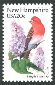 New Hampshire State Bird and Flower.  Purple Finch and Purple Lilac.