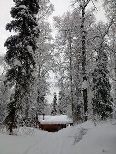 Bald Lake cabin, Alaska
