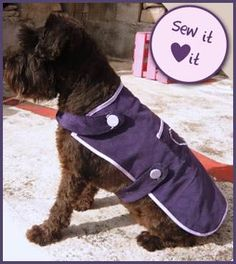 An Easy Way to Sew a Dog Coat Pattern