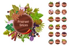 Fragrant spices and herbs by TopVectors on Creative Market