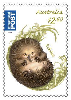 Australia stamp - Spiky Echidna on our Bush Baby stamp