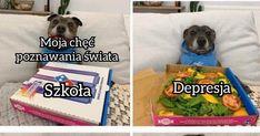 Angielskie śmieszki - Jeja.pl Facial Tissue