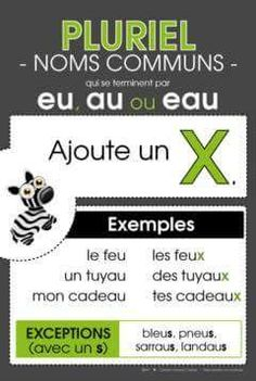 Pluriel -eu, -au et -eau -> +x French Verbs, French Grammar, Learning French For Kids, Teaching French, French Worksheets, French Classroom, Kids Study, French Immersion, Learn A New Language