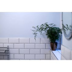 Like I mentioned this we just had the ensuite finished. Its a wetroom which is pretty cool. I'm in love with the light blue paint its called #atmosphere from #dulux  #interior #interiors #bathroom #metro #tiles #tileaddiction #vintage #victorian #asparagusfern #fern #plantsofinstagram #blue #design #interiordesign #cool