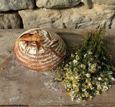 Letní chleba v remosce Pizza, Bread, Baking, Food, Brot, Bakken, Essen, Meals, Breads