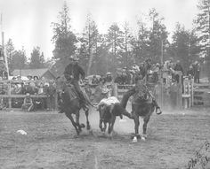Vic Castro, Sisters Rodeo 1946