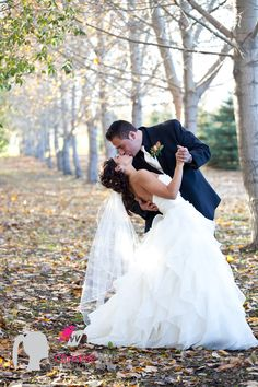 Edmonton wedding Photographer. bride and groom pose, wedding photography, fall wedding, outdoor wedding photography, christine wills photography edmonton