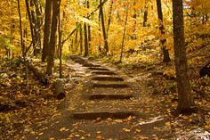 East Bluff Trail - Devil's Lake State Park in Baraboo, Wisconsin.