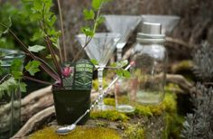 Herb garden tailor made for cocktails... what's not to love??