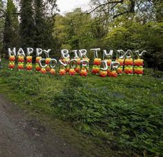 Conor McGregor Jr. -- 1st Birthday Party Pics | Photo 16 | TMZ.com Birthday Balloons, 1st Birthday Parties, Balloon Columns, Conor Mcgregor, Party Photos, Balloon Decorations, Jr, Pumpkin, Pumpkins