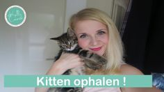 Vlog: Kitten ophalen