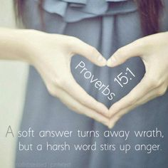 #BIBLE A soft answer turns away wrath, but a harsh word stirs up anger. Proverbs 15:1