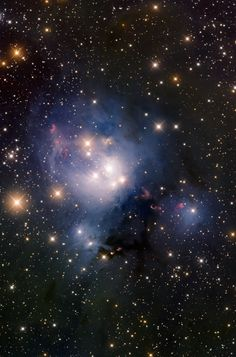 NGC7129: star-forming region & reflection nebula in Cepheus; it is about 3000 ly away; stars in this nebula are very young, about 1 Ma old. The red blobs above & below the nebula are Herbig Haro objects, the result of jets of gas streaming away from young stars in the nebula