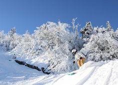 Les secrets du Mont Sutton Ski Canada, Quebec, Lodges, Skiing, Outdoors, Image, Mountains, Ski, Cabins