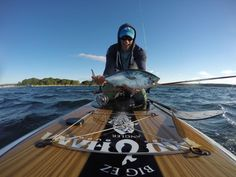 Stand-Up Fishing Tactics By Sean Callinan SUP fisherman & Yale University Fly Fishing/Tying Instructor Fishing Kayak Reviews, Sup Fishing, Saltwater Fishing, Fishing Tips, Fish Stand, White Water Kayak, Fishing Magazines, Best Knots, Standup Paddle Board