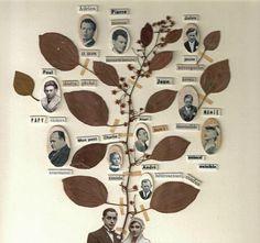 maissa toulet arbre vicieux
