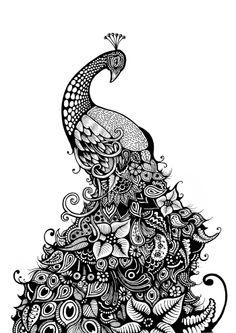 peacock drawing - Bing Imágenes