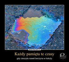 Benzyna w kałuży – Pamiętacie ten zachwyt nad kolorami? Polish Memes, Weekend Humor, Funny Mems, Hello It, Dead Memes, True Memes, Wtf Funny, Reaction Pictures, Funny Photos