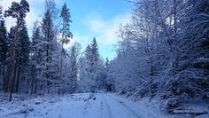 Wintermärchen-Spaziergang