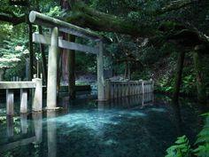 Mitarashi pond at Kashima Jingu in Ibaraki Prefecture Japan