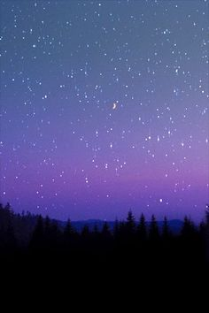 Looking into the sky in a quiet place and seeing falling stars, gives me hope. Ciel Nocturne, Sky Full Of Stars, Falling Stars, Galaxy Wallpaper, Milky Way, Oeuvre D'art, Night Skies, Sky Night, Stars At Night