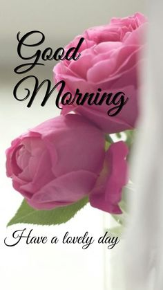 Good Morning Msg, Good Morning Friends Quotes, Good Morning Roses, Morning Gif, Good Morning Picture, Good Night Image, Morning Pictures, Morning Quotes, Butterfly Quotes