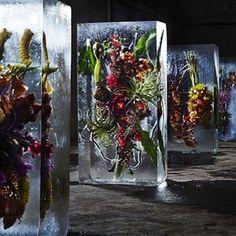 Azuma Makoto - Iced Flowers // #azumamakoto #artsxdesign