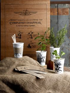 NATIVE & TRUTH COFFEE team up to transform disposable coffee cups into herb containers, one takeaway caffeine fix at a time